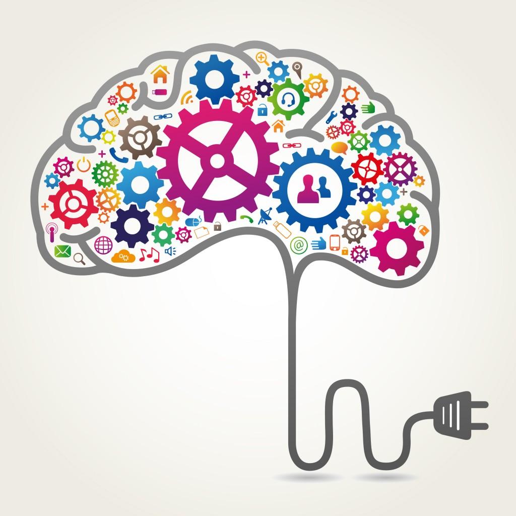 the-brain--is-the-most-complex-organ-brain-fitness-is-vital