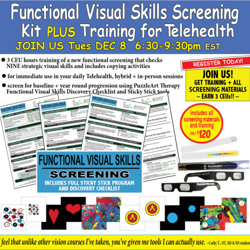 Functional Visual Skills Training for Telehealth - Includes Materials - Full Sticky Stick Program, Checklist and more