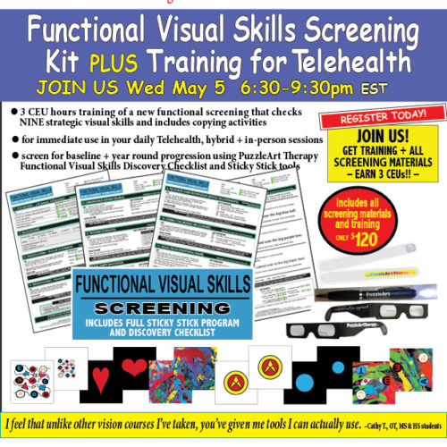 Functional Visual Skills Discovery Checklist KIT PLUS TRAINING website 5.5.2021